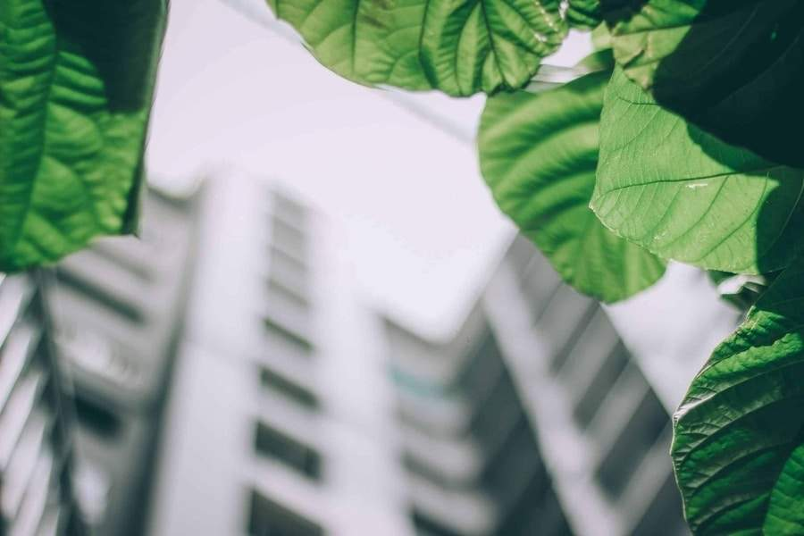 5 Reasons to Include Green Energy for Multifamily Investment and Development